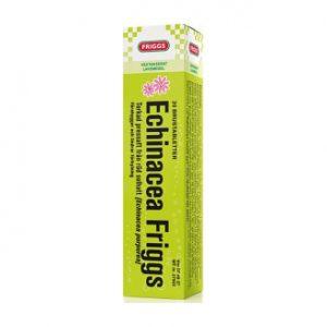 echinacea-friggs-brustablett-20-st